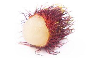 rambutan meyvesinin faydaları