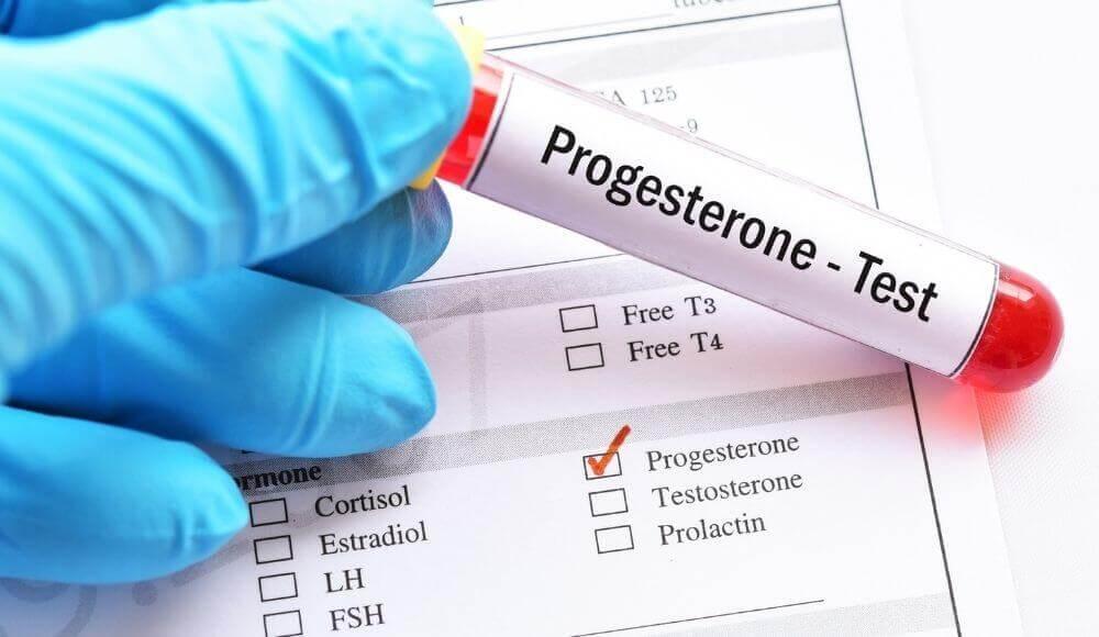 progesteron içeren besinler