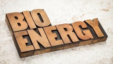bioenerji nedir nasıl yapılır