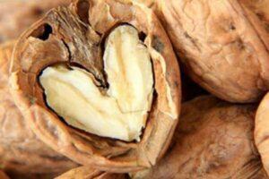 omega 3 kalbi koruyor