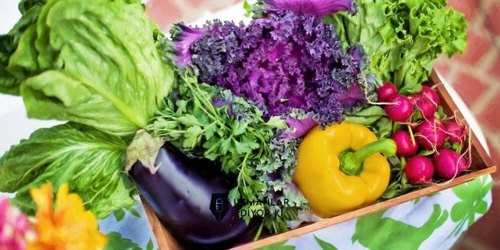 organik-besinler-besleyici-ve-lezzetli-mi