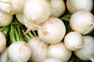 beyaz besinler