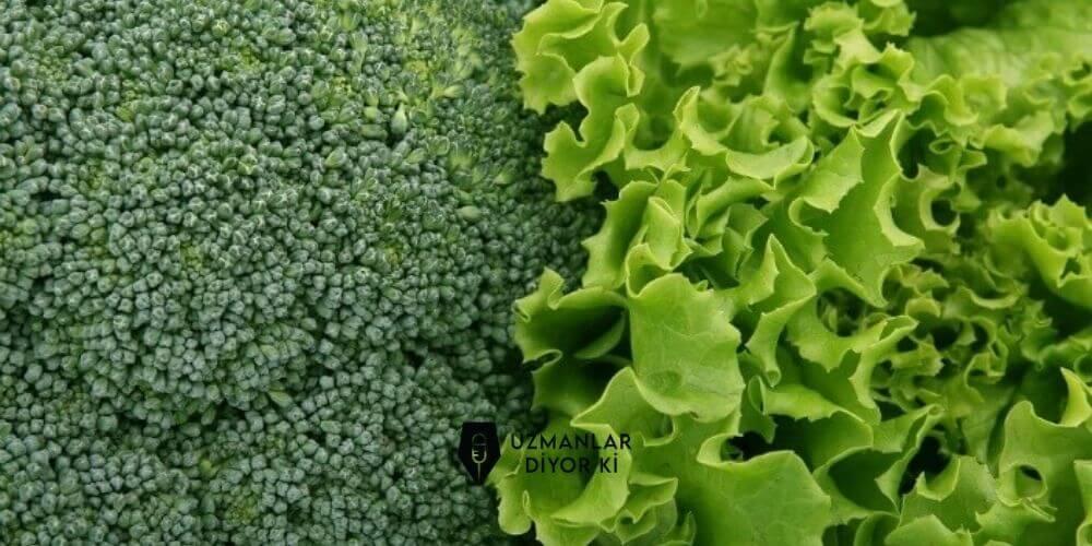 renkli-beslenmede-yesil-renkli-besinler