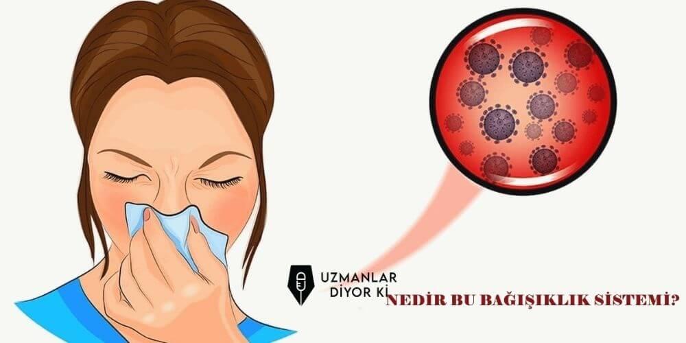 bagisiklik-immun-sistemi-nedir