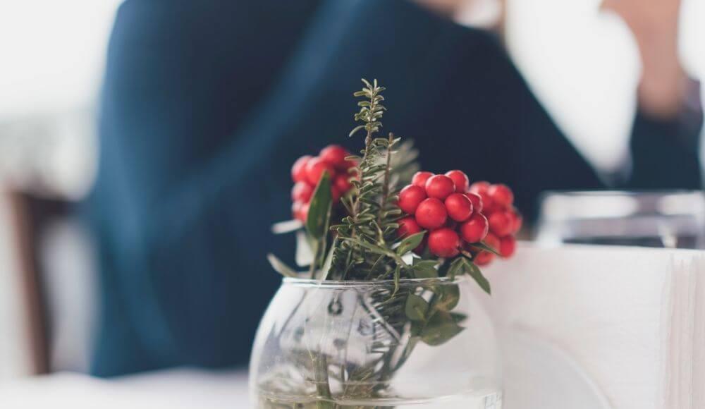 kokina bitkisi evde nasıl yetiştirilir