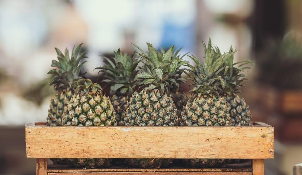 ananas kansere faydası