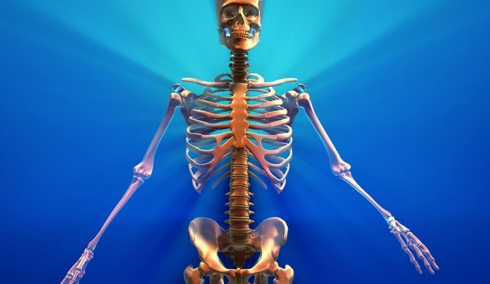 kemik gelişimine etkileri