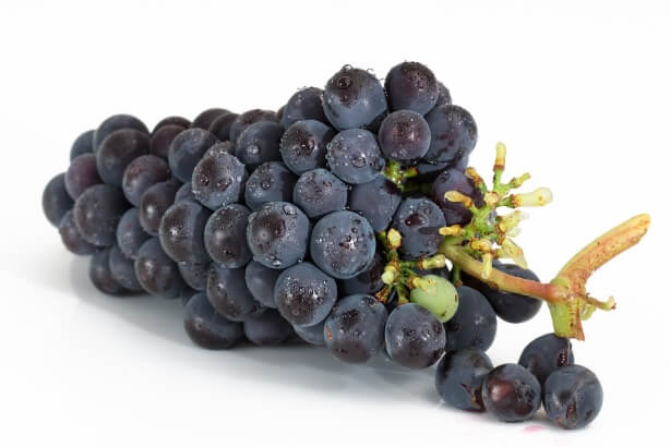 besinlerin termik etkisi: üzüm