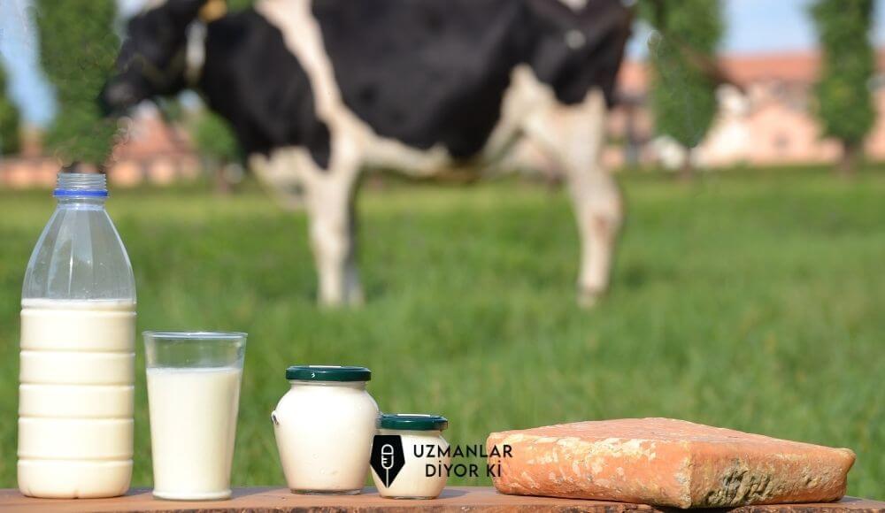 Türkiye' de süt tüketimi